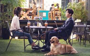 Baek-Jin-Hee-Highlight-Yoon-Doo-Joon-2
