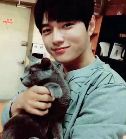 Kim Myungsoo Cat 2